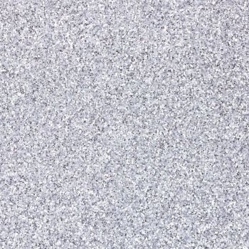 Biodegradable Cosmetic Glitter Silver 5g (BN 1759)