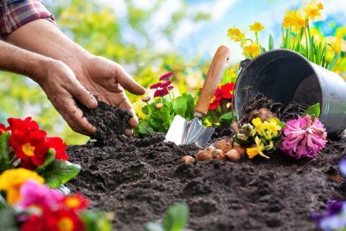 Garden Dirt US 50ml (BN 719603)