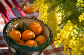 Mimosa Mandarin 50ml (BN 0766)