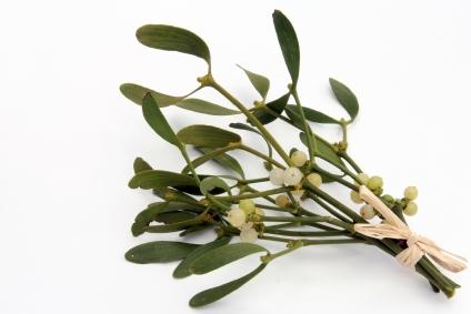 Mistletoe UK 50ml