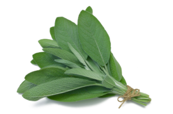 Sage Leaf 50ml (BN 622749) *(NOT FOR EU COSMETIC USE)*