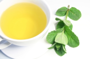 Peppermint Tea 50ml (BN 1630)