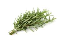 Rosemary 50ml (BN 58364)