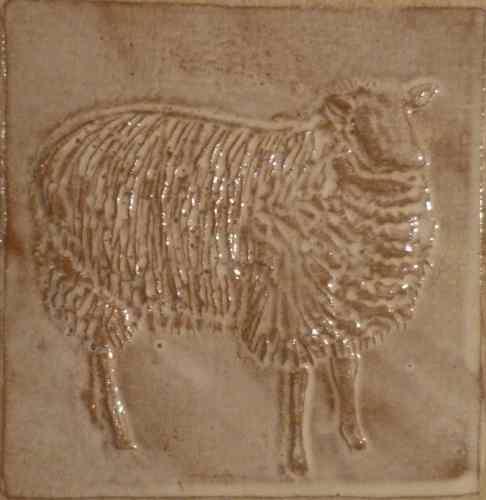 side facing sheep