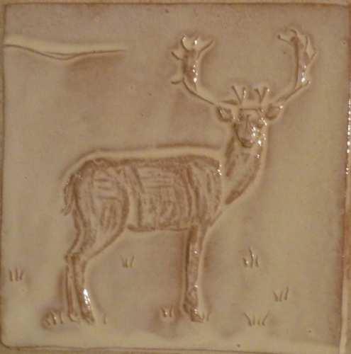 deer facing