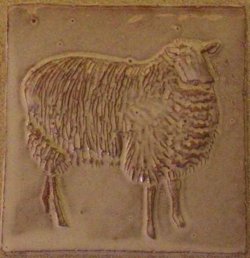 side sheep a
