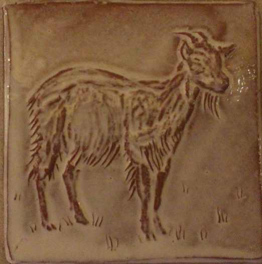 goat a