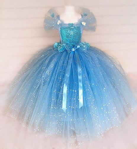 Cinderella Insprired Tutu Dress