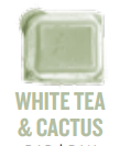 white tea and cactus wickfree scented candle bar scentsy