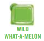 wild what a melon wickfree scented candle bar scentsy