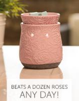 beats a dozen roses