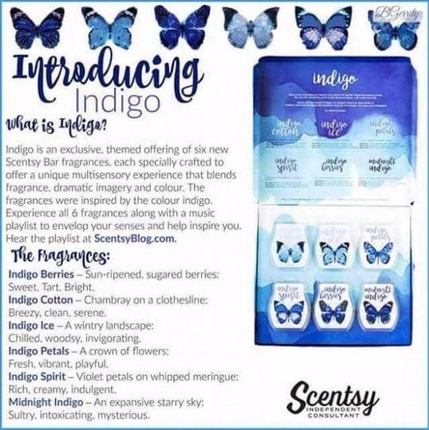 scentsy indigo gift set