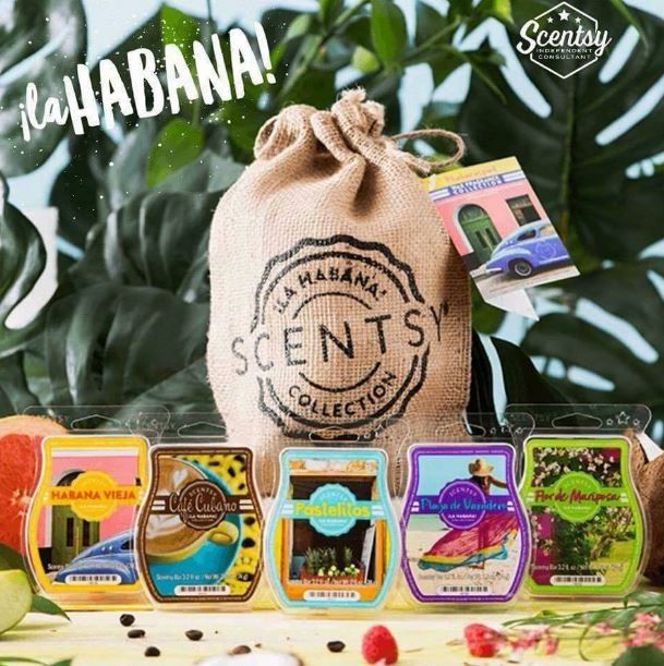 la habana limited edition scentsy bar collection wick free scented candles