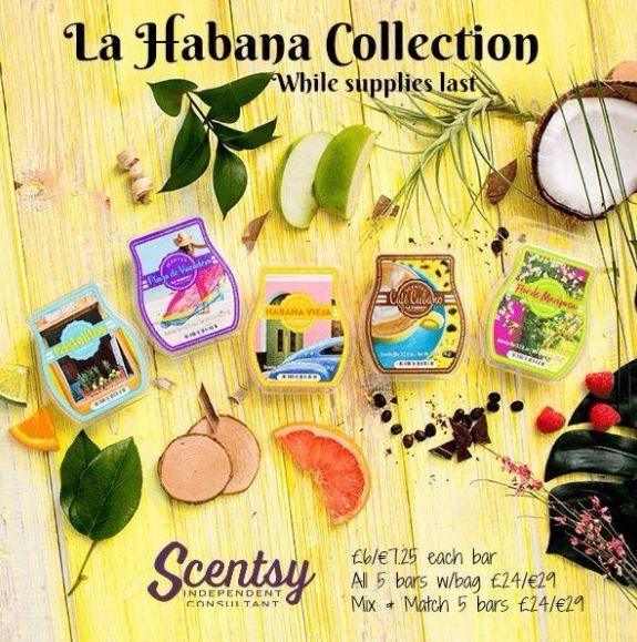 la habana collection scentsy bars wick free scented candles