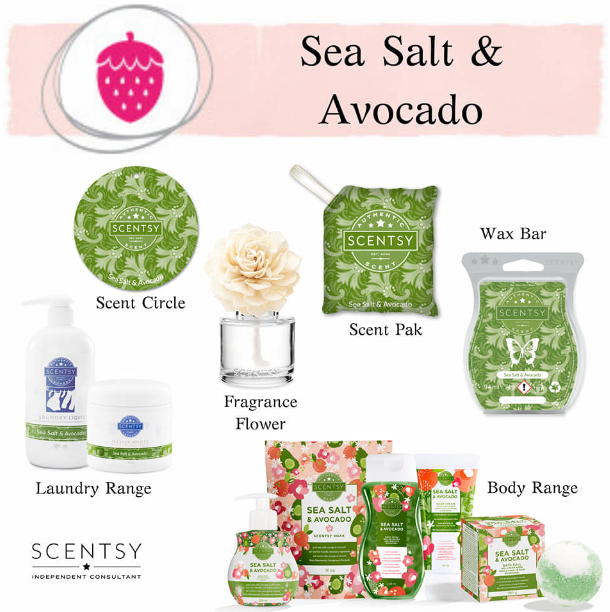 Sea Salt & Avocado Scentsy