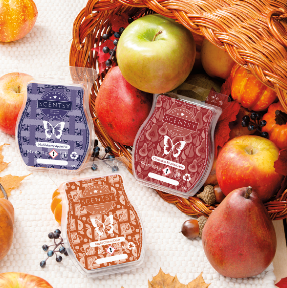 Harvest Delights Scentsy Bar 3-pack