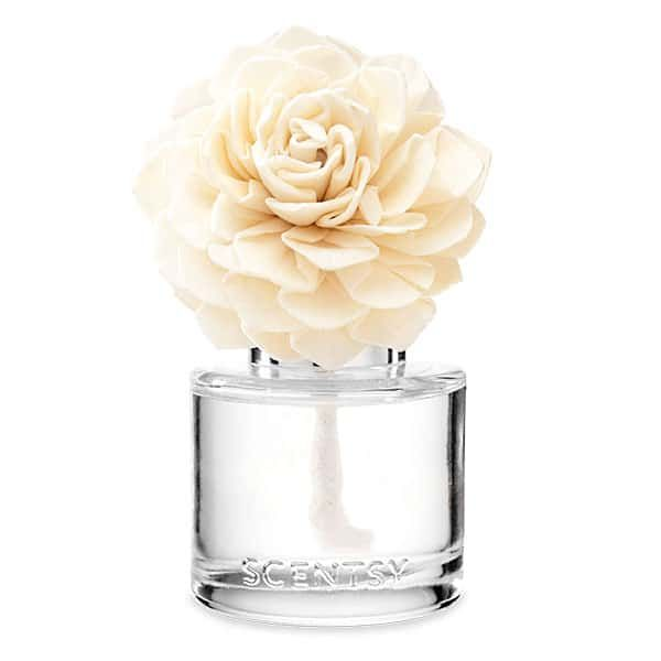 Amazon Rain Fragrance Flower wick free scented candles
