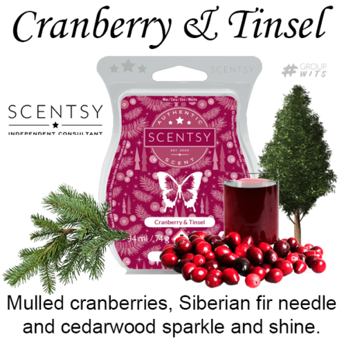 Cranberry & Tinsel Scentsy Bar wick free scented candles