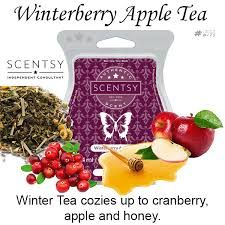 Winterberry Apple Tea Scentsy Bar wick free scented candles