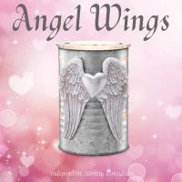 angel wings 4