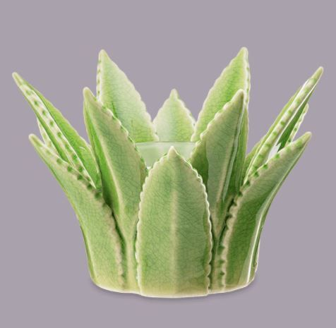 Aloe Vera Scentsy Warmer