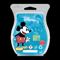 Disney Oh Boy! - Scentsy Bar