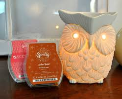 whoot scentsy warmer light up example