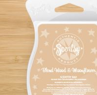 blondewood and moonflower New uk scentsy fragrance wick free candle wax bars