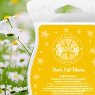 fresh cut daisies New uk scentsy fragrance wick free candle wax bars