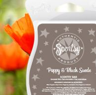 poppy and blush suede New uk scentsy fragrance wick free candle wax bars