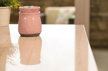 cracking rose scentsy warmer