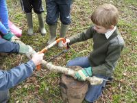 Woodland crafts - 14th August - 10-11.30am