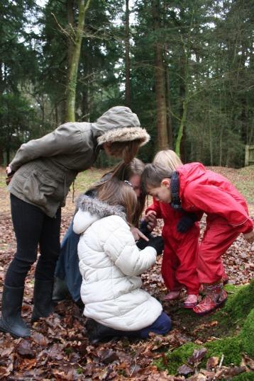 Kids looking at bug