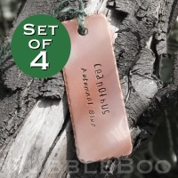 Set of 4 Personalised copper hand-stamped Garden Plant Tags.