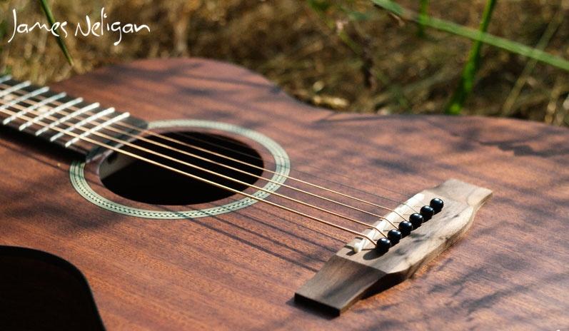 Neligan acoustic