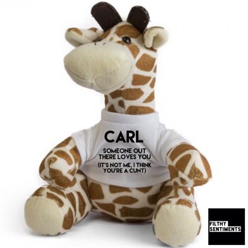Cute GIRAFFE Teddy Bear with CUNT message