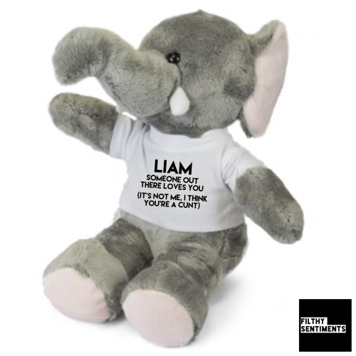 Cute ELEPHANT Teddy Bear with CUNT message