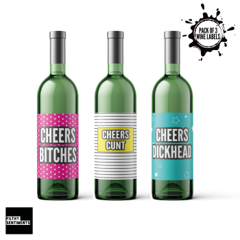 CHEERS PACK OF 3 WINE BOTTLE LABELS - E33
