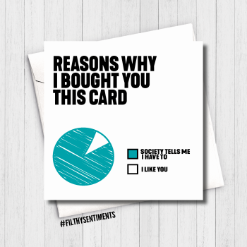 REASONS WHY TURQOUISE CARD - FS617