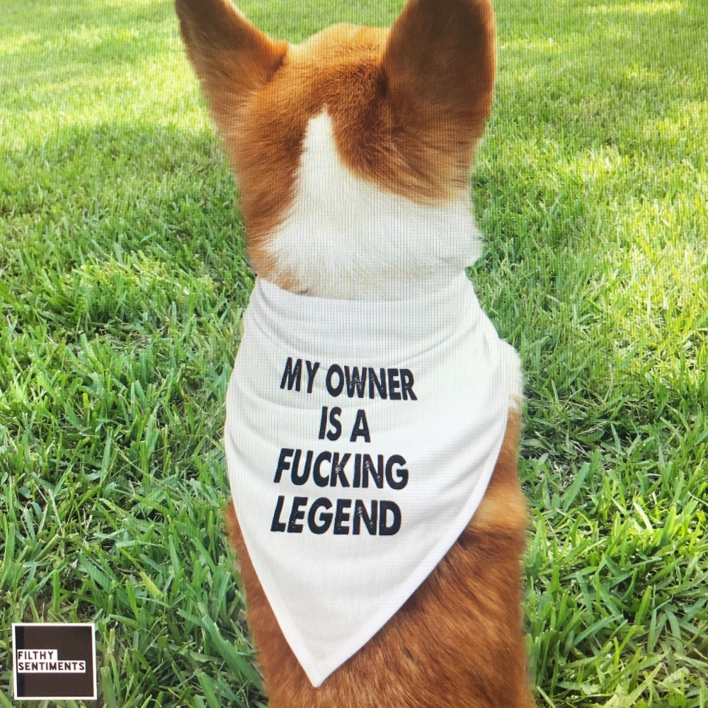 MY OWNER IS A LEGEND PET BANDANA - PB009