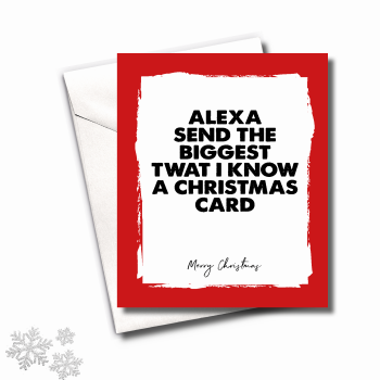 MINI ALEXA CHRISTMAS CARD PACK - FS666 (MINI)