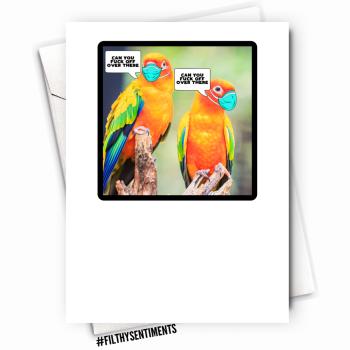 PARROT CARD - FS1123