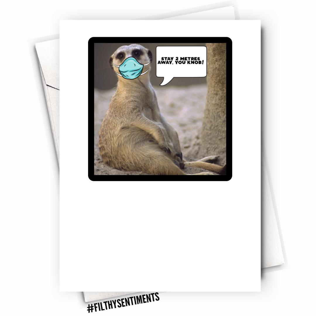 MEERKAT CARD - FS1124