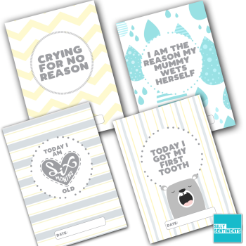 SILLY SENTIMENTS MILESTONE  CARDS - E30
