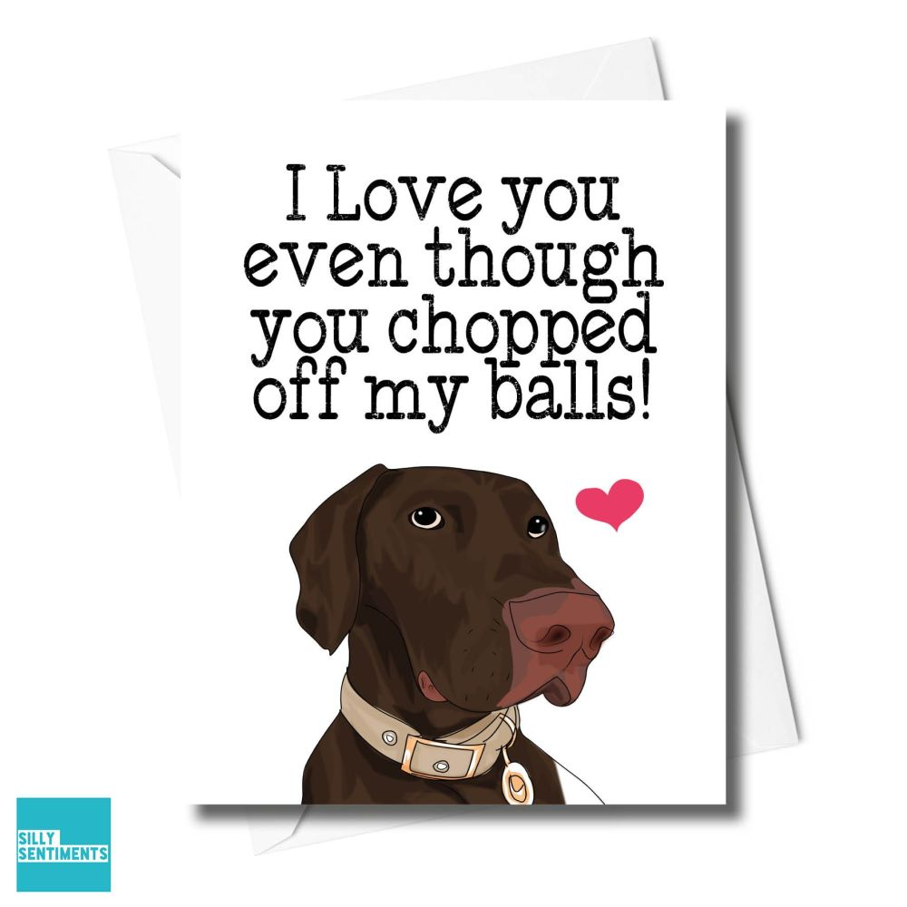 DOG CHOPPED BALLS CARD - FXFS0343