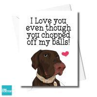 DOG CHOPPED BALLS CARD - FXFS0343