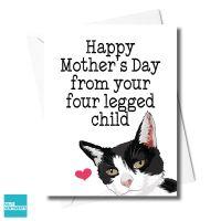 CAT FOUR LEGGED CHILD CARD - FXFS0344