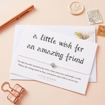 Amazing Friend (WISH042)