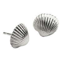 Medium Cockle Shell Studs