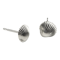 Small Cockle Shell Ear Studs